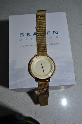 Skagen Damenuhr Skw2212 Bild