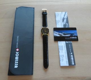Jowissa Damen J2.  039.  M Roma 30 Mm Gold Black Dial Roman Numeral Leather Uhr Bild