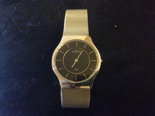 Skagen Armbanduhr 233lssb Herren Bild