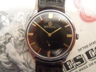 Darwil Herrenarmbanduhr Hau Handaufzug Ca.  60er Jahre Cl.  7071 Uhrmachernachlass Bild