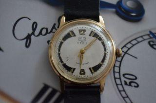 Glashütte Gub Armbanduhr Bild