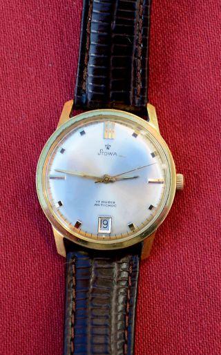 Stowa Vintage Herren Armbanduhr Handaufzug Ca.  1970 Bild