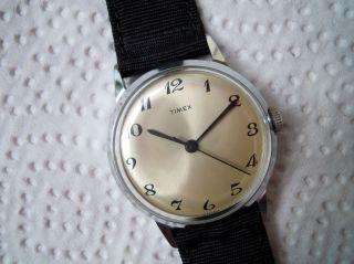 Schöne Timex Hau,  Handaufzug,  Werk Great Britain,  Ca.  70er Jahre Bild
