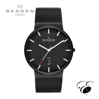 Skagen Skw6053 Uhr Armbanduhr Quarzwerk Analog Bild