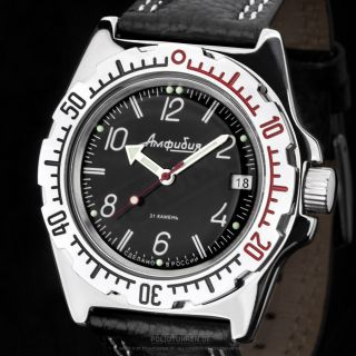 Vostok Амфибия Automatik Kal.  2416 1502 110909 Russian Mechanical Diver Watch Bild