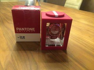 Ice - Watch Pantone Universe Jazzy Unisex (pan.  Bc.  Jaz.  U.  S.  13) - & Ovp Bild