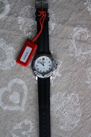 Swiss Military Hanowa Uvp 149,  - Herrenuhr Damenuhr Armbanduhr Bild