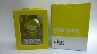 Ice Watch Pantone - Sulphure Spring - Pan.  Bc.  Sus.  U.  S.  13 - - Bild