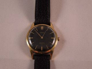 Berg Armbanduhr Gold 21 Rubis Incabloc Handaufzug Vintage 60er Jahre Bild