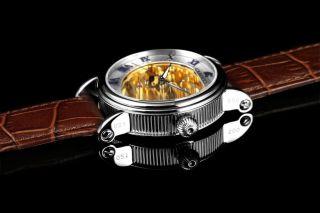 Carucci Automatik Herren Uhr Catanzaro Ii Ca2203gd Braun Golden Bild