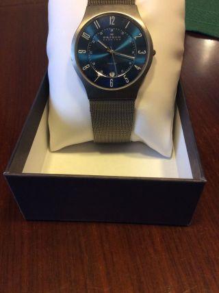 Skagen Titanium Grenen Armbanduhr Für Herren Bild
