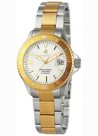 Carucci Uhr Brindisi Damen Taucheruhr Mit Citizen Automatikwerk Bicolor Ca2200bc Bild