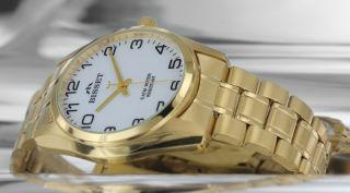 Bisset Bsdd65 Gold Swiss Made W/r 5 Atm Herrenuhr Armbanduhr Bild