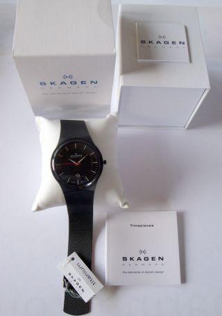 Skagen Denmark Watch Uhr Herrenuhr Titanium Bild
