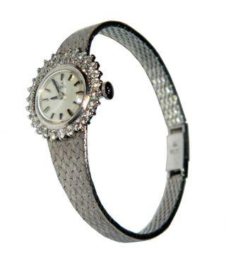 Ebel Damenuhr Uhr 750er Weißgold 18 Karat,  38 Brillianten 1,  4 Karat Nr.  54003 Bild