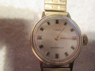Auflösung Von Opas Private Uhrensammlung Nr 15 Timex Bild