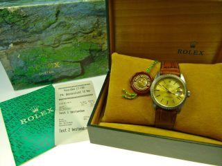 Rolex Datejust,  Saphirglas,  Wasserdicht,  Orig.  Rolex - Box,  Leder - & Orig.  Jubileeband Bild