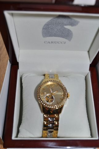 Carucci Watches Damen - Armbanduhr Analog Automatik Edelstahl Ca2197gd Bild