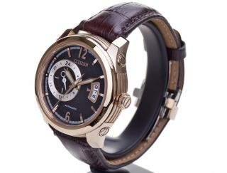 Nagelneu Citizen Np3013 - 01e
