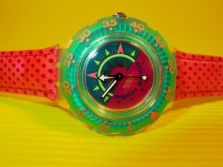 Swatch Scuba Tipping Compass In & Ovp,  Neuer Batterie Sdk111 Lederarmband Bild