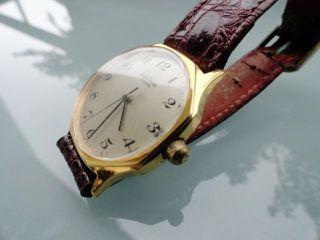 Unisex Armbanduhr Pallas Para Hau Vergoldet Leder Handaufzug - Top Retro Bild