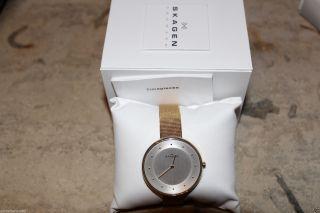 Skagen Klassik Skw2141 Damenuhr Golden Mashchen Armband Bild