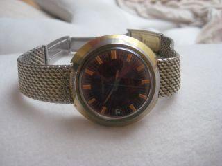 Herrn Armbanduhr Timex Bild