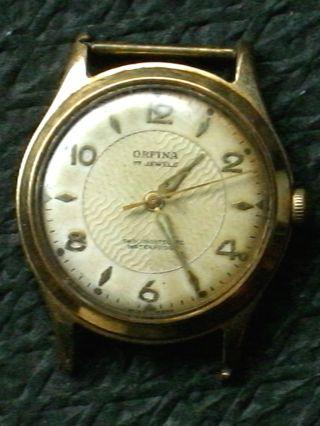 Seltene Mechanische Orfina Handaufzug Hau,  Herrenarmbanduhr,  Herrenuhr,  Armbanduhr Bild