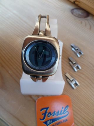 Fossil Uhr Damenarmbanduhr Bg1032 Bg - 1032 Damen Armbanduhr Top Bigtic Bild
