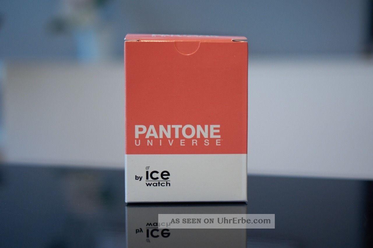 Ice - Watch Pantone Universe Dubarry Unisex (pan.  Bc.  Dub.  U.  S.  13) & Ovp Armbanduhren Bild