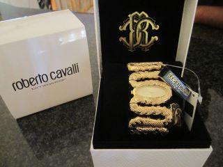 Tolle Damen Roberto Cavalli Schlangenuhr Gold Bild