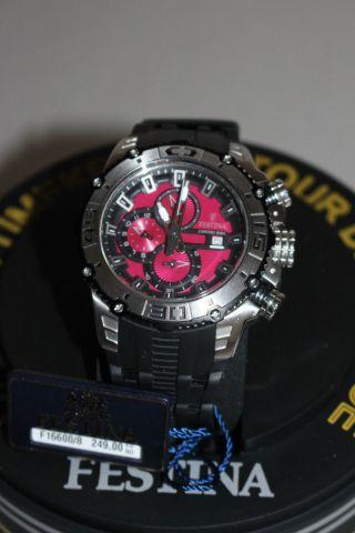 Festina Sport Chrono Bike Armbanduhr Für Herren (f16600/8) Top Uhr Bild